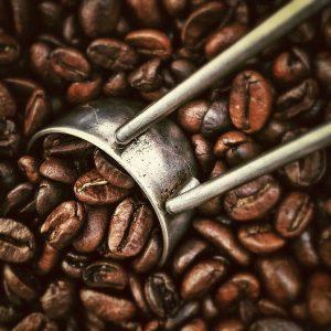 Breville Kaffeemaschinen