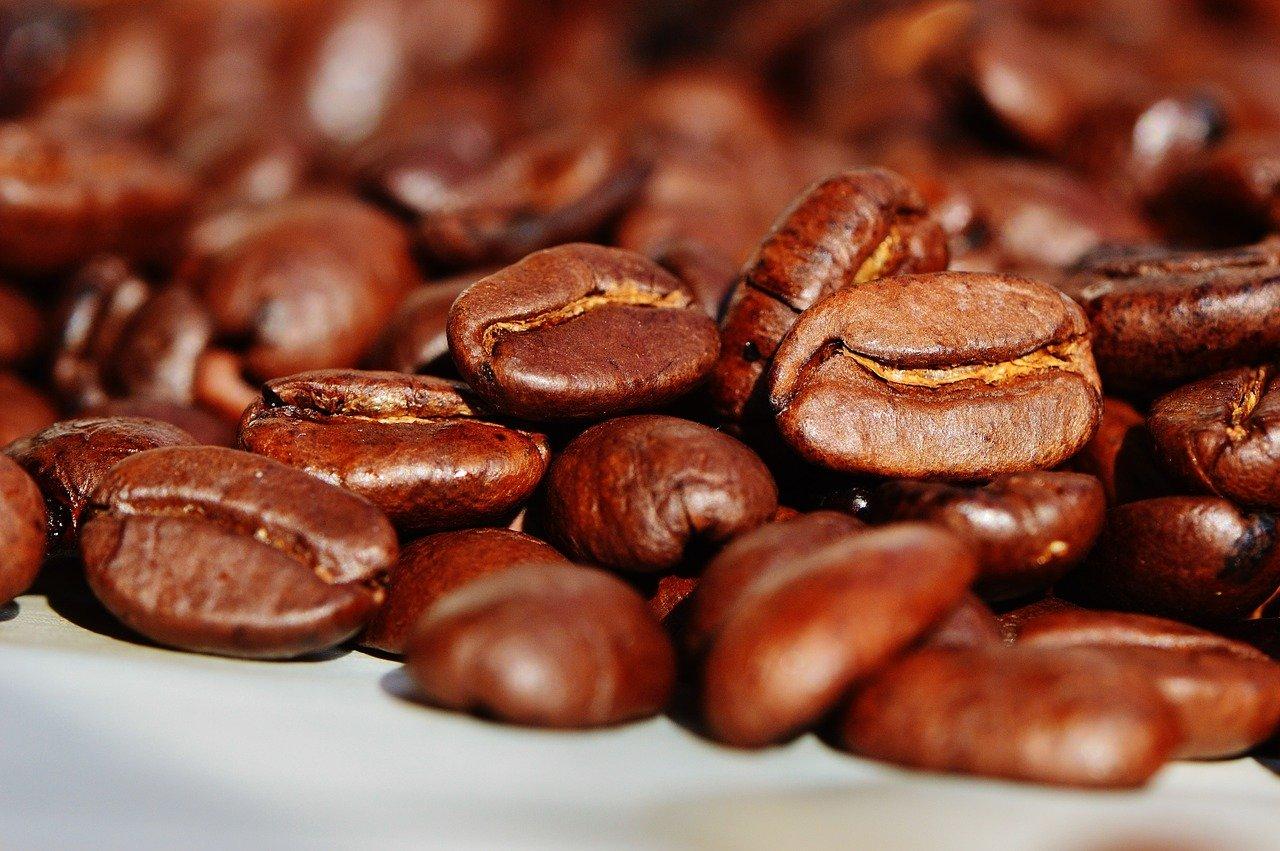 kaffee-syphon-maschine